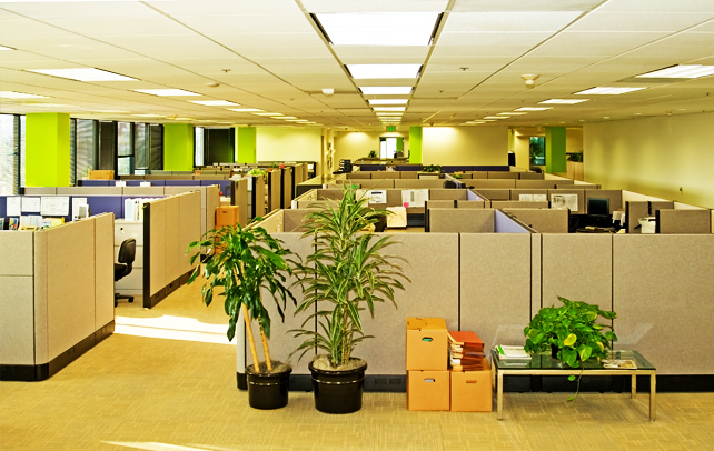 Cubicle Etiquette & Rules To Behave In A Cubicle